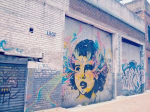 Bogotá street art photo by Madellina Bird (cc)